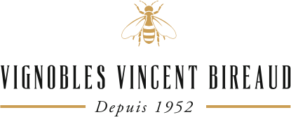Vignobles Vincent Birreaud
